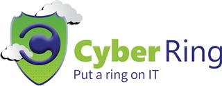 Cyber Ring – Security Solution against the Increasing Perimeter of Attacks